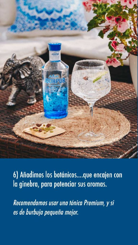 hacer un Gin Tonic paso 4